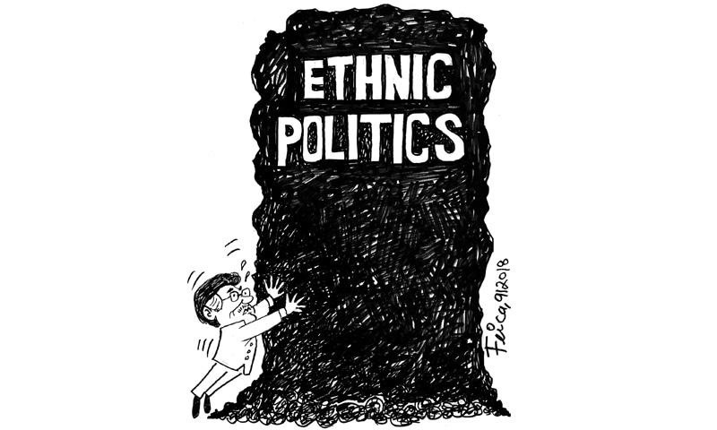 Feica's Cartoon