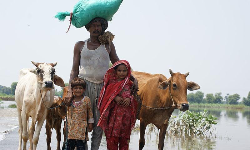 آب و ہوا کی تبدیلی سے لاحق خطرات کی زد میں آنے والے ممالک میں پاکستان ساتویں نمبر پر ہے—تصویر آئی یو سی این