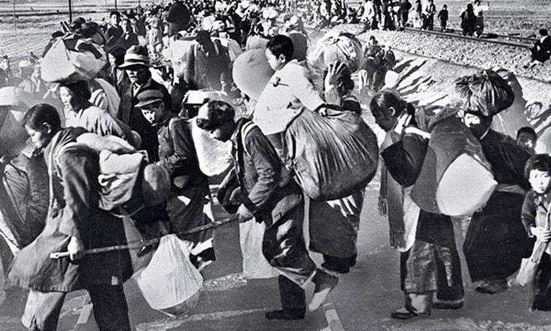 1950 کی کوریا جنگ کے متاثرین۔