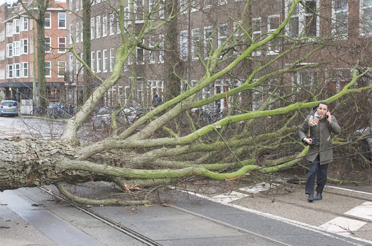 Amsterdam: A man makes a phone call following a narrow escape after his scooter was hit by a crashing tree uprooted by heavy winds on Thursday.—AP