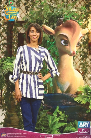 Singer Natasha Humaira Ejaz lends her voice to the character of Mehru, the adorable little markhor who befriends Allahyar (voiced by Anum Zaidi) while Noori'sAli Noor plays Mani, the evil hunter
