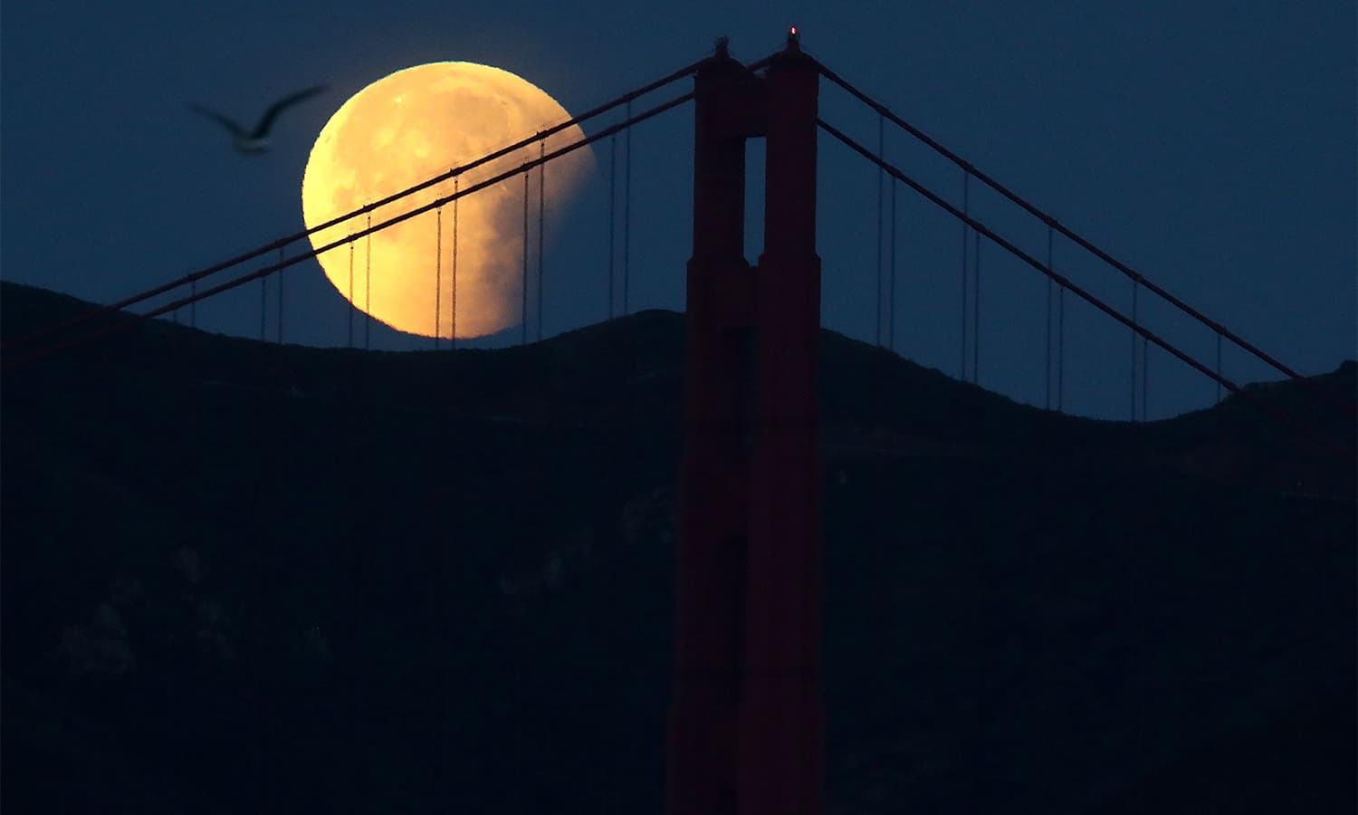 A partially eclipsed super blue blood moon sets behind the Golden Gate Bridge on January 31 in San Francisco, California.— AFP