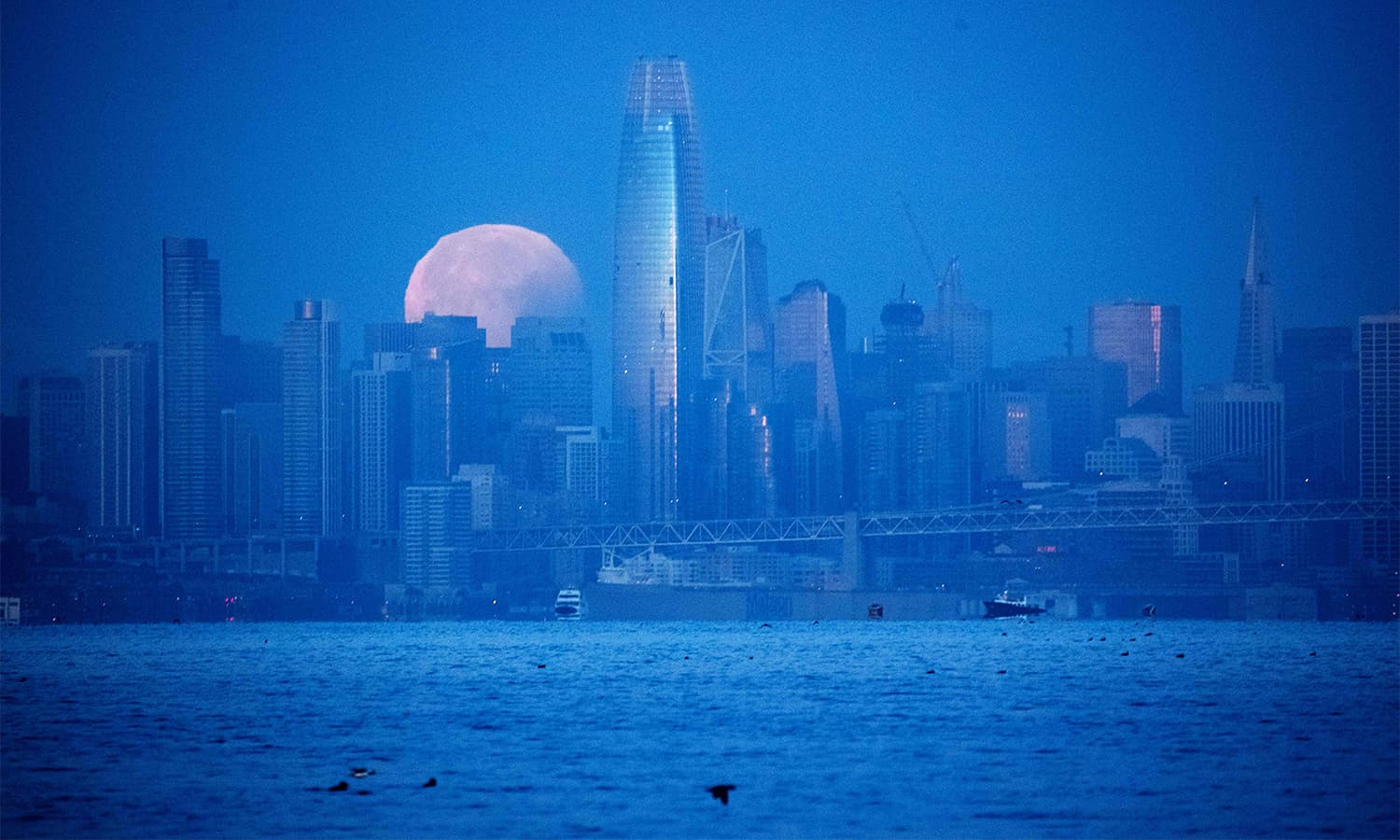 A super blue blood moon sets behind downtown San Francisco, California before dawn on January 31.— AFP