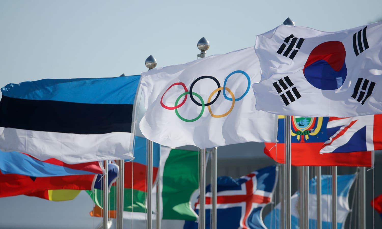 جنوبی کوریا اور دیگر ممالک کے جنڈھے مختلف ملکوں کی نمائندگی کر رہے ہیں— فوٹو: اے پی