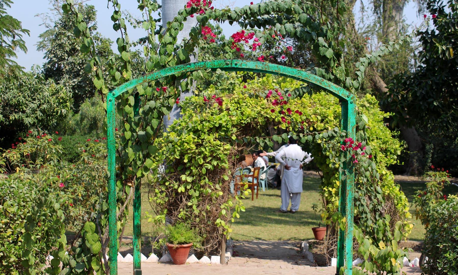 باغ کا داخلی دروازہ— فوٹو اختر حفیظ