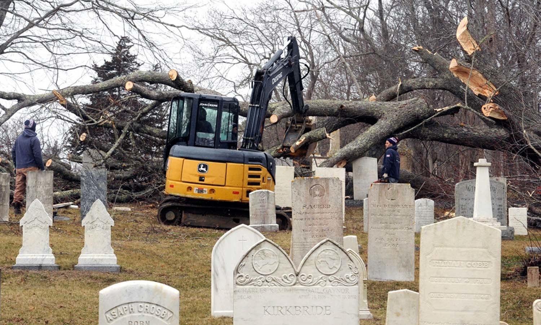 تیز ہواؤں سے اکھڑنے والے درختوں کو بھاری مشینوں سے ٹھکانے لگایا جارہا ہے — فوٹو: اے پی