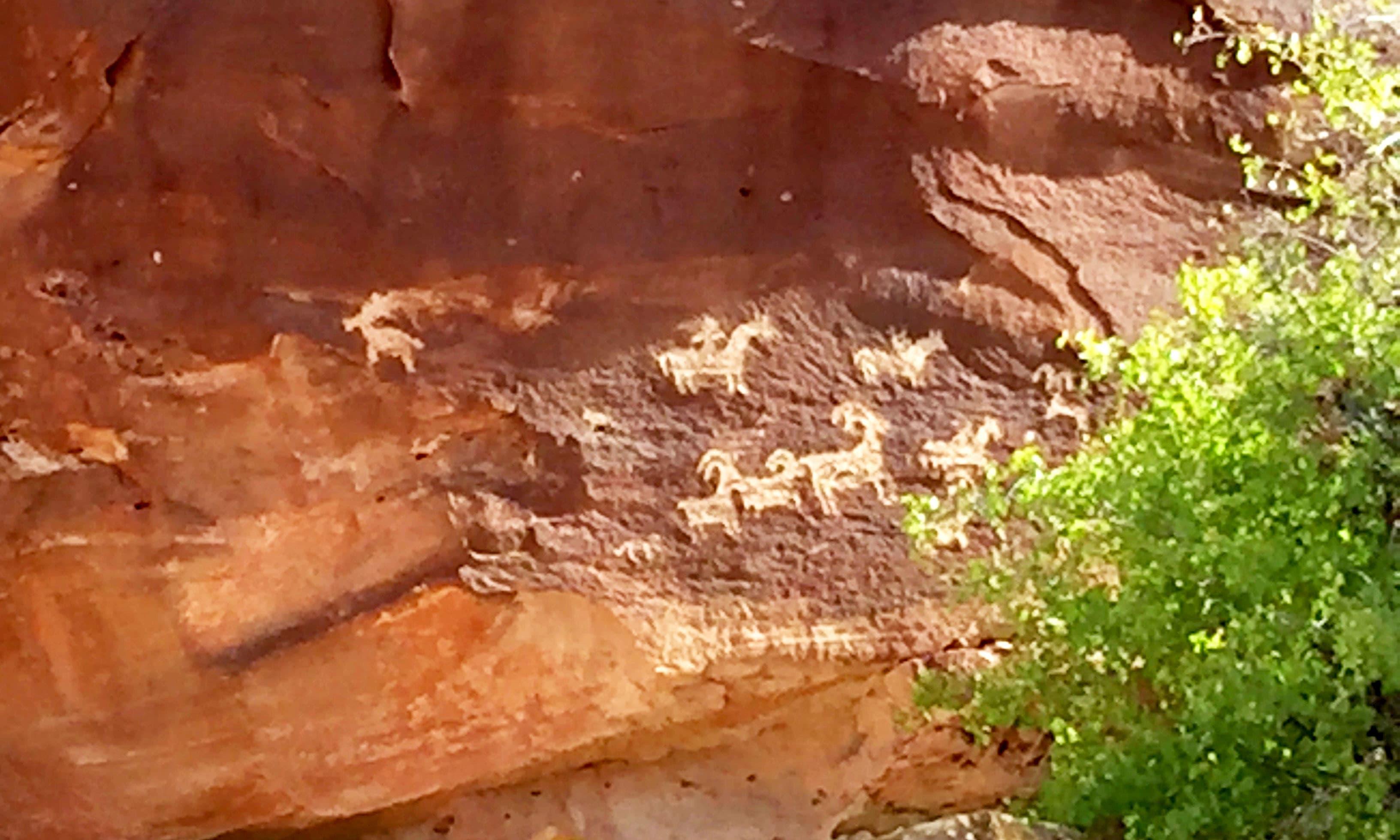 Native American petroglyphs. —Hassan Majeed