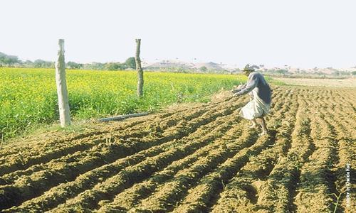 Severe water shortage ahead, Kharif crops likely to suffer