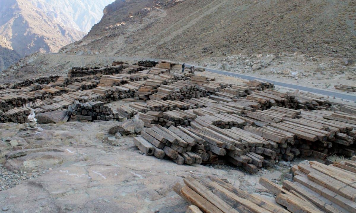 Logs lying along the Karakoram Highway | Ghulam Dastageer