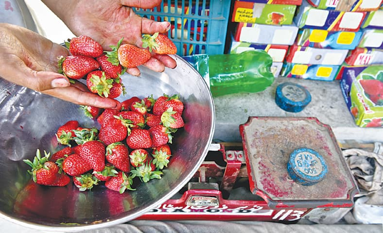 A kilogram of strawberries usually costs around Rs240.
