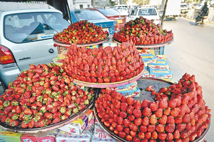 Don't miss out on strawberries this season.