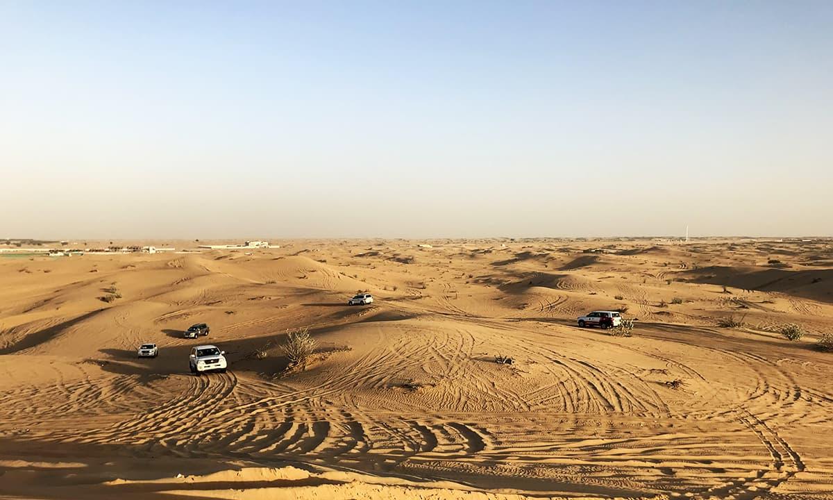 صحرا میں سفاری۔ — تصویر احسن سعید