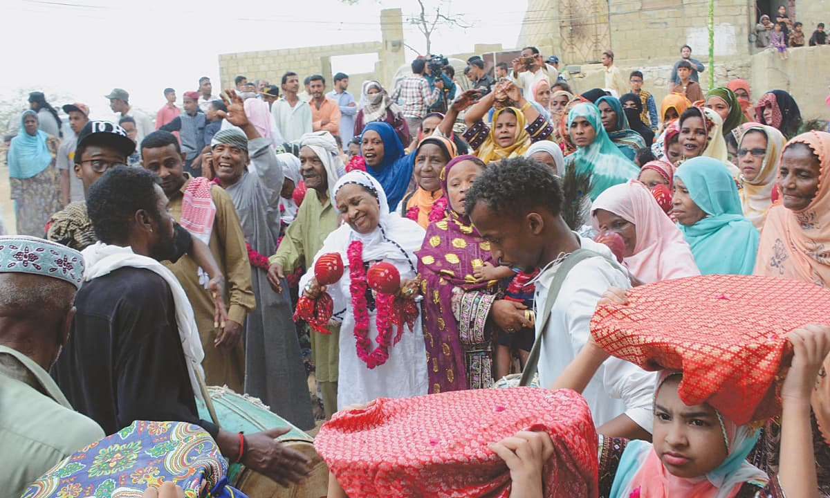 Dancing Sheedis headed to the shrine   PPI