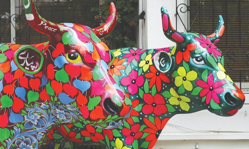 A couple of flowery cows at the Consulate General of Switzerland, Karachi