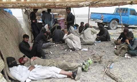 مہاجرین بلوچستان کے سرحدی علاقے میں موجود عارضی آرام گاہوں میں موجود ہیں