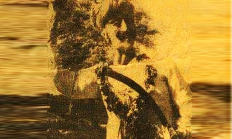 روپلو کولہی پارکر کے ایک بہادر ہیرو، تعلقہ ننگر پارکر کی گاؤں کنبھاری کے باسی تھے