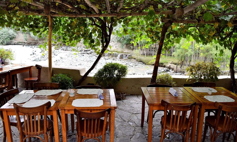 The vine-covered terrace restaurant.