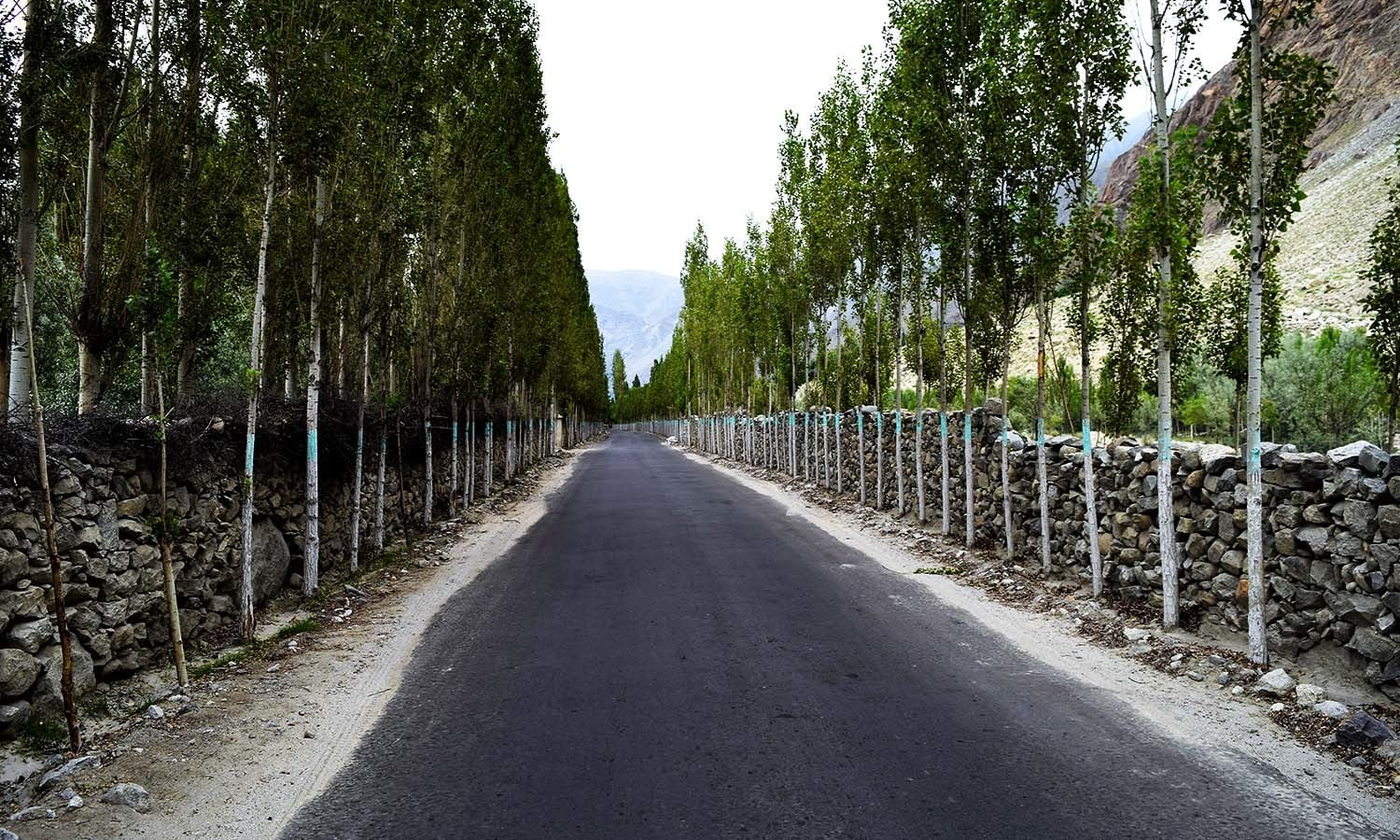 The road to Shigar.
