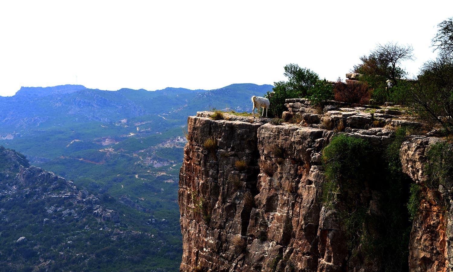 The vertical drop and natural fortress