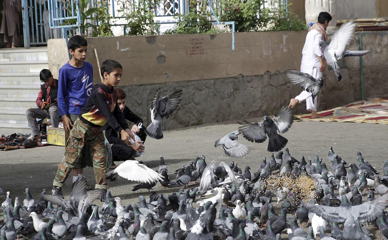 A boy feeds pigeons before Eidul Fitr prayers outside of Shah-e-Dushamshera mosque in Kabul, Afghanistan. — AP