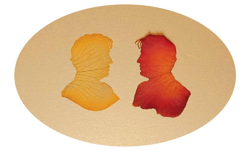 Rose Petal Self-portraits Silhouettes, Abdullah Syed
