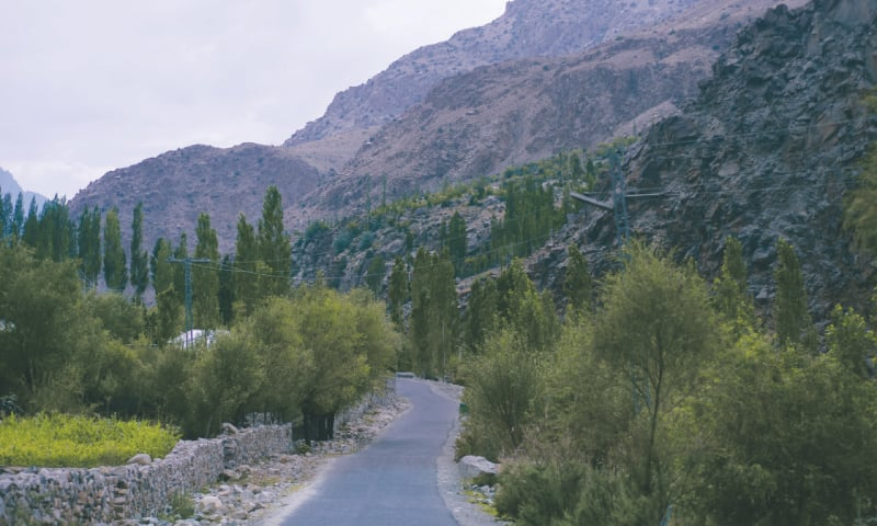 The road to Phander from Gilgit
