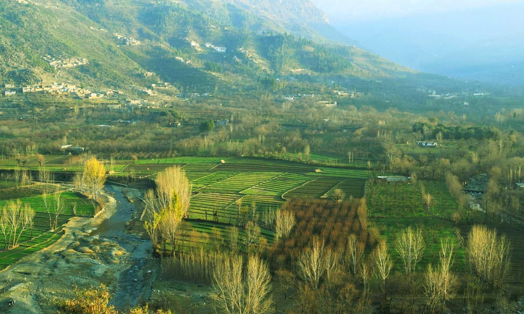 منگلور گاؤں کا پہاڑی سے نظارہ—تصویر امجد علی سحاب