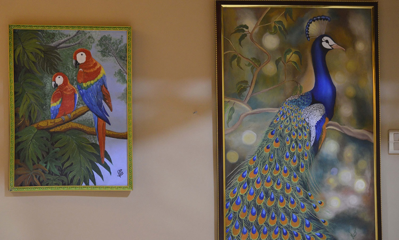 نمائش میں پرندوں کی پینٹنگز بھی رکھی گئی تھیں