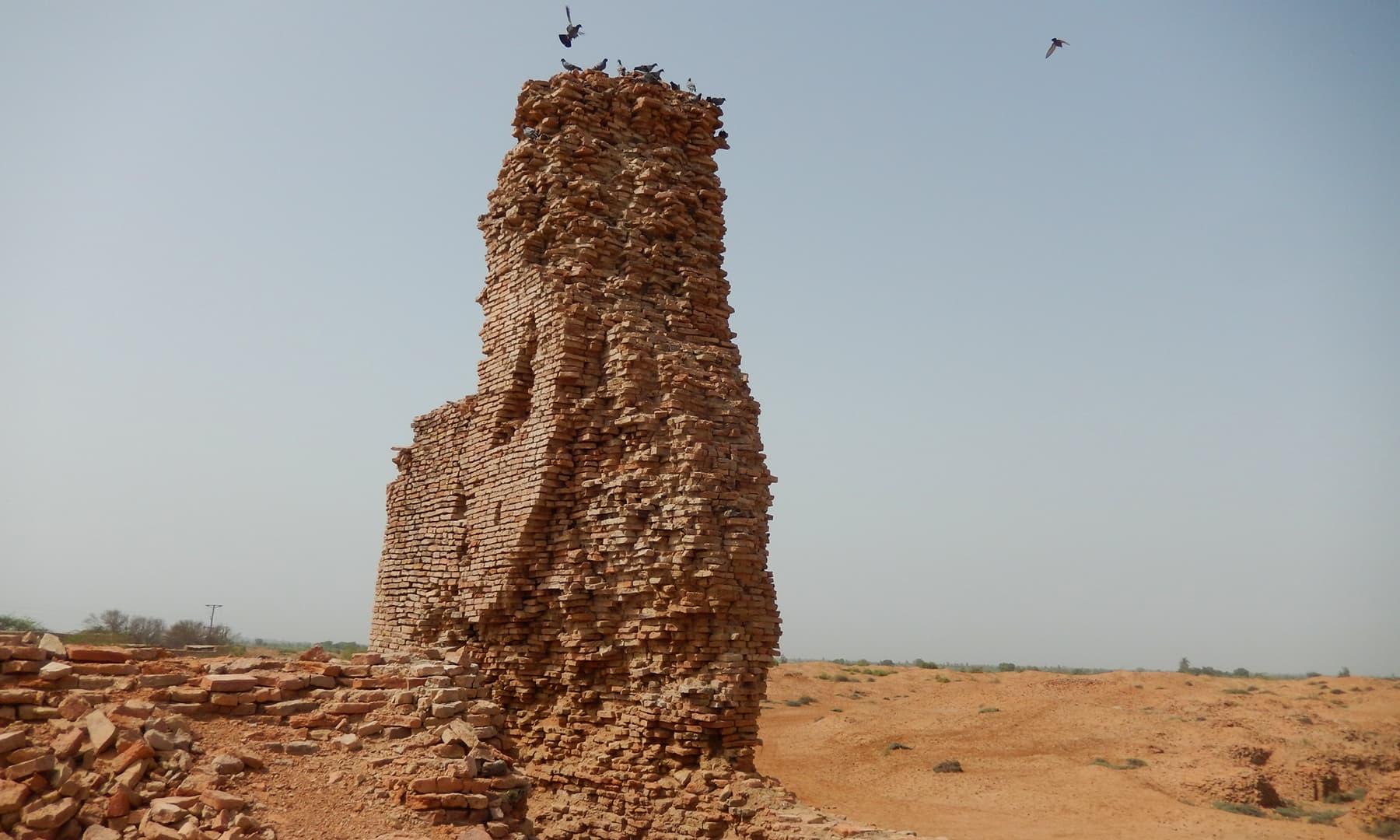 تھل یا ٹاور—تصویر ابوبکر شیخ