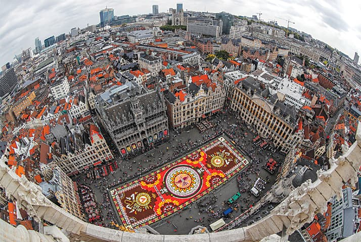 """Brussels: An 1,800 square metres flower carpet on the theme  """"Guanajuato, cultural pride of Mexico"""" and made with over 500,000 dahlias and begonias adorns the Grand Place during an exhibition.—Reuters"""