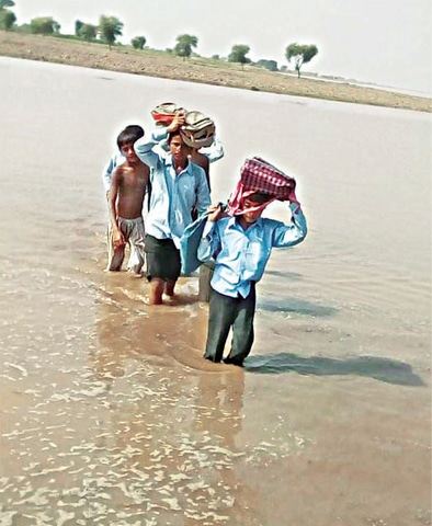 JHANG: Students wade through flooded fields. — Dawn
