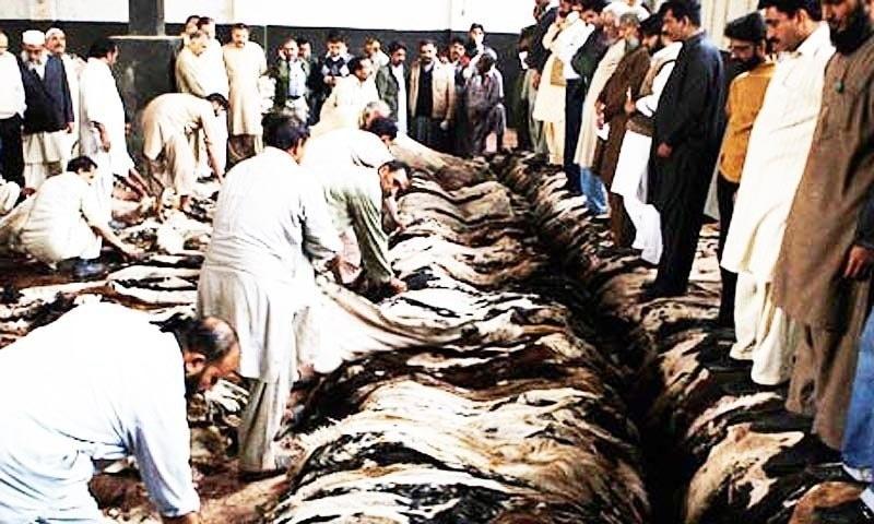 عالمی منڈی میں چمڑے کی قیمتوں میں کمی واقع ہوئی ہے۔