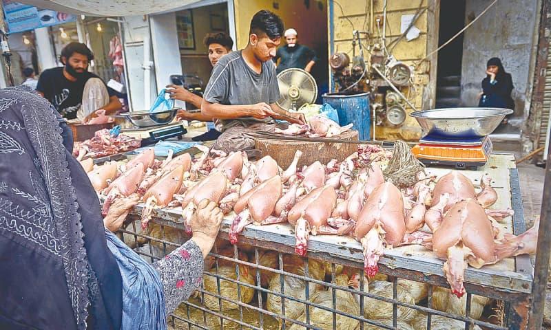پاکستان میں مرغی کے گوشت کی فی کس کھپت 7 کلوگرام سالانہ ہے