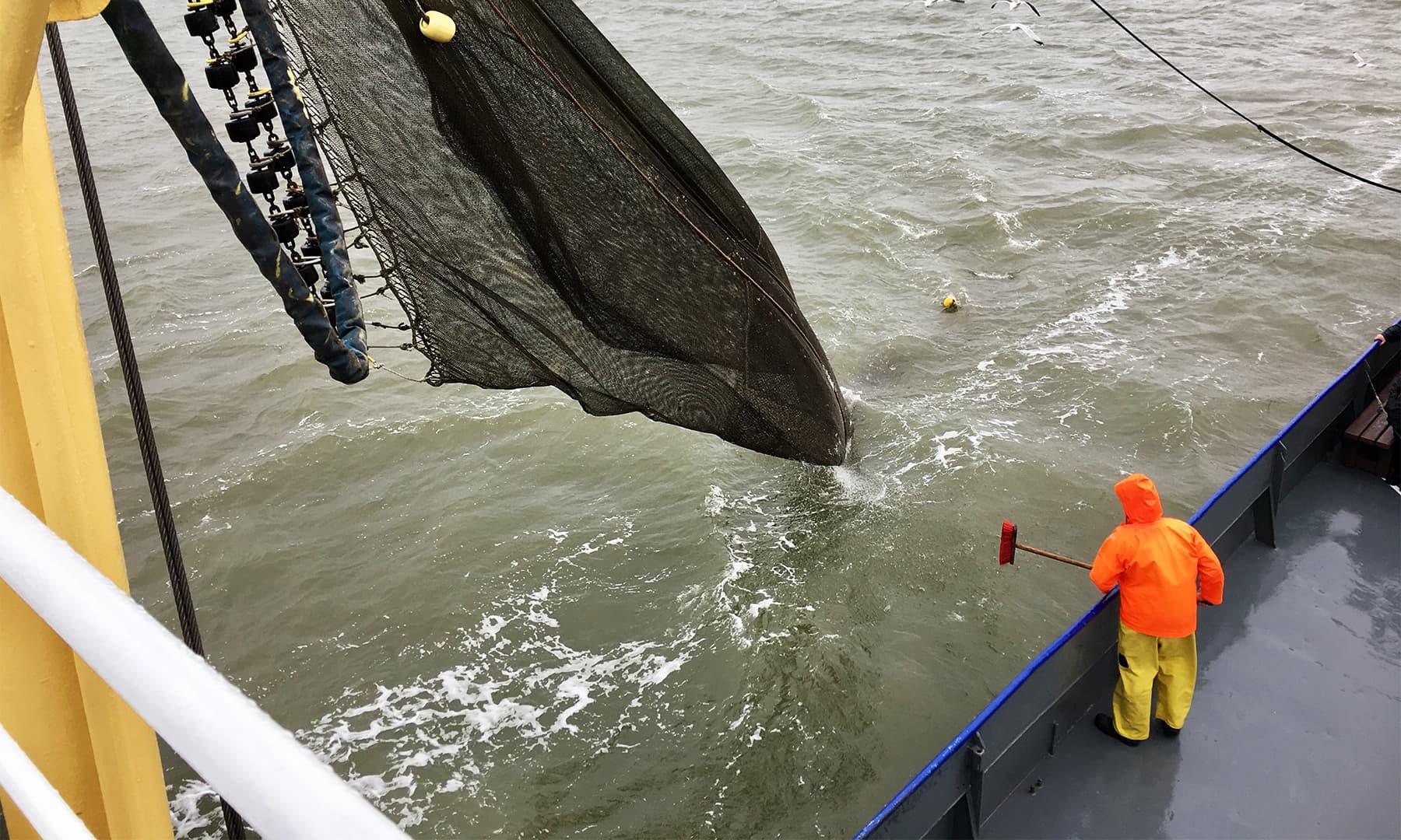 نارتھ سی میں اس طرح کسی جہاز پر مچھیروں کے ساتھ ماہی گیری کرنا ایک لائف ٹائم تجربہ ہے