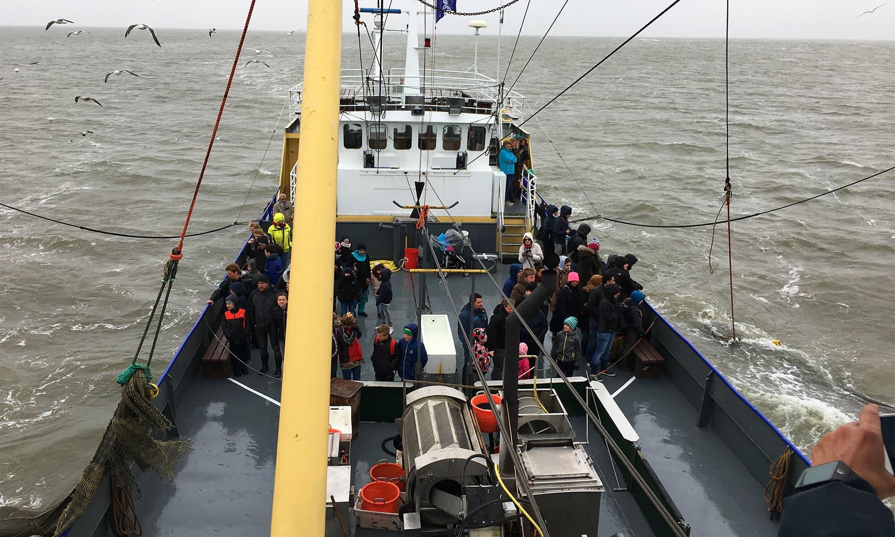 پکڑے گئے جھینگوں کو جہاز پر ہی بوائل کیا جاتا ہے اور تمام سیاحوں کو کھانے کے لیے پیش کردیا جاتا ہے