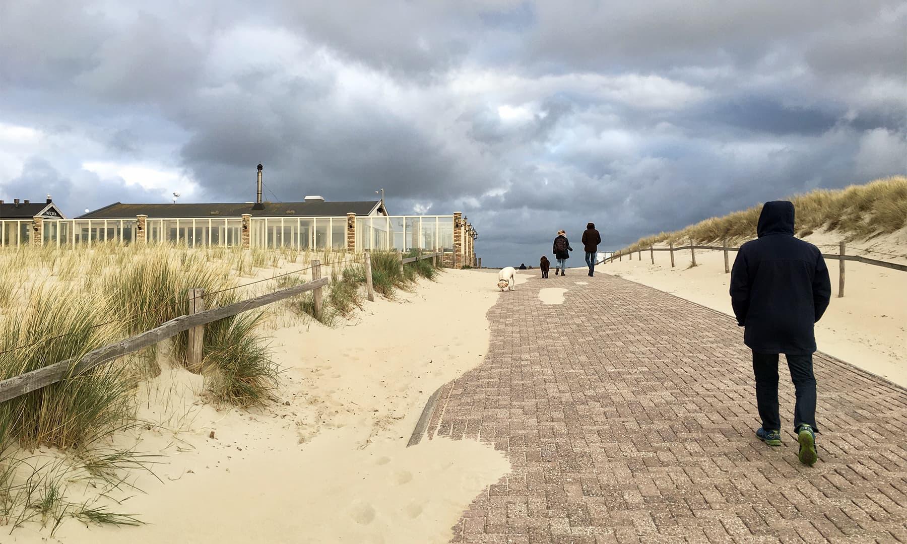ساحل کے ساتھ ساتھ ریت کے ٹیلوں کے درمیان بل کھاتے راستے