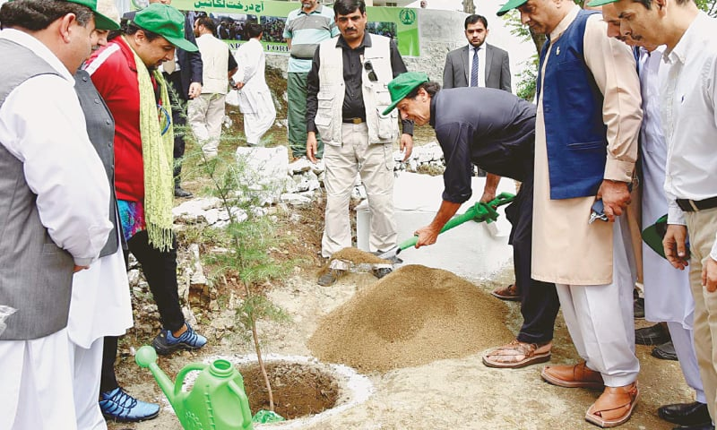 HARIPUR: Prime Minister Imran Khan plants a sapling to launch the 10 Billion Tree Tsunami campaign on Sunday. The government has set a target of planting 10 billion trees in five years to fight global warming and deforestation. Over 200 distribution centres have been set up to provide saplings free of cost.—PPI
