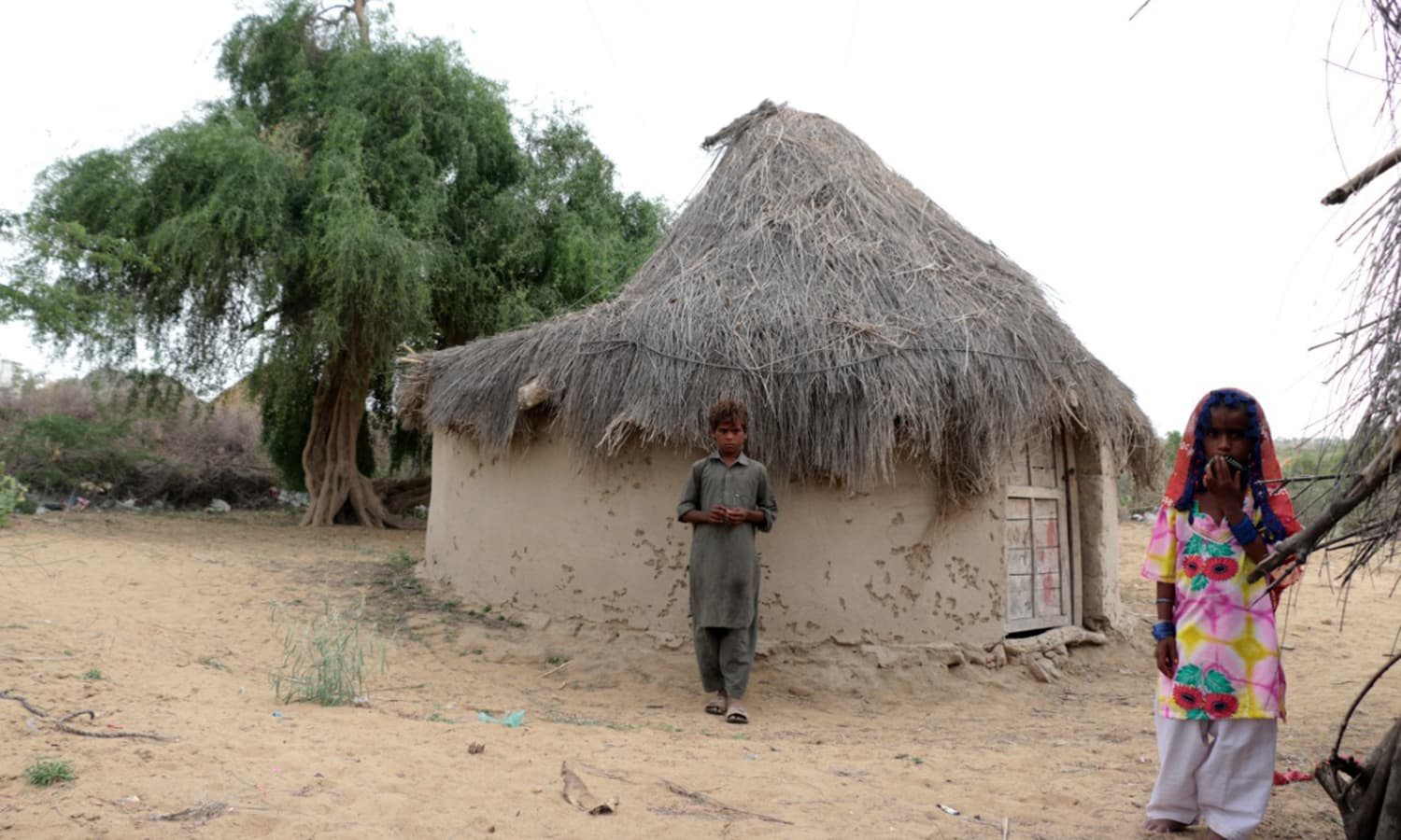 A modest dwelling commonly found across the poverty-stricken region.