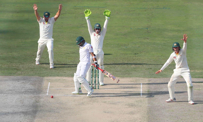 آسٹریلین فیلڈرز پاکستانی بلے باز اظہر علی کے خلاف ایل بی ڈبلیو کی ناکام اپیل کر رہے ہیں— فوٹو: اے ایف پی