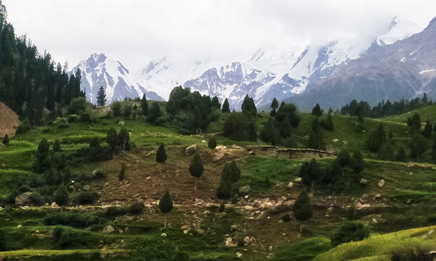 نانگا پربت برف کی چادر اُوڑھے ہوئے—تصویر عظمت اکبر