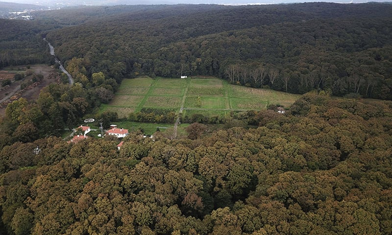 An aerial view of the Belgrade Forest in Istanbul, Friday, Oct. 19, 2018 where the focus of investigation has now been shifted by  Turkish investigators. —AP
