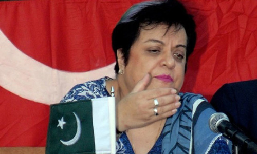 Dr Mazari says Pakistan should propose a solution to the Kashmir problem resembling the Irish peace accord.— File