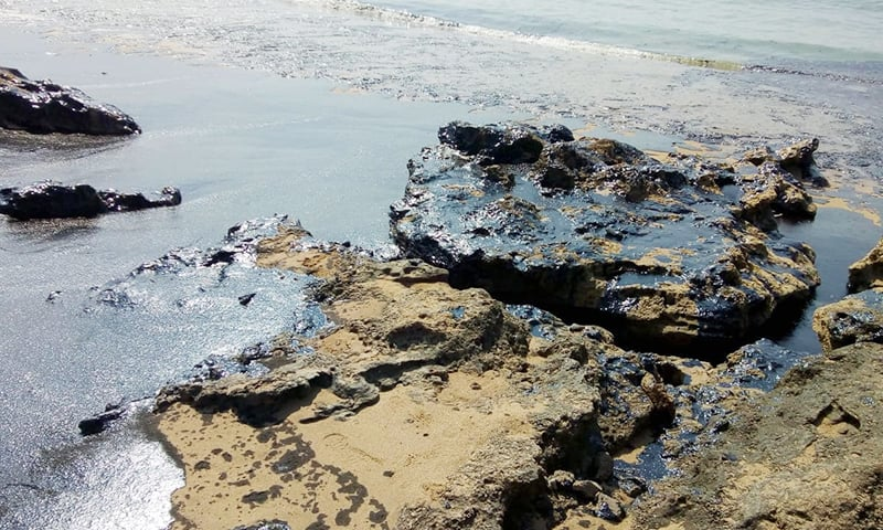 Tar and oil are wreaking havoc on the entire stretch of coast from Mubarak Village to Churna Island. —Photo provided by author
