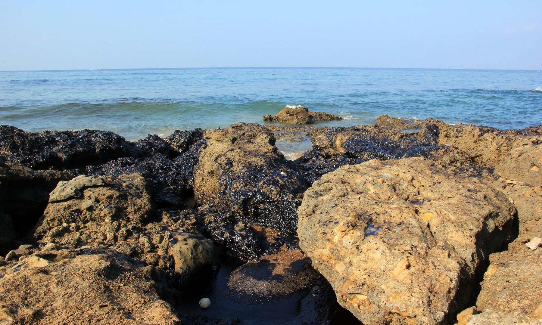 سمندر میں موجود پتھر بھی تیل سے محفوظ نہیں رہ سکے۔— فوٹو سعید الاسلام