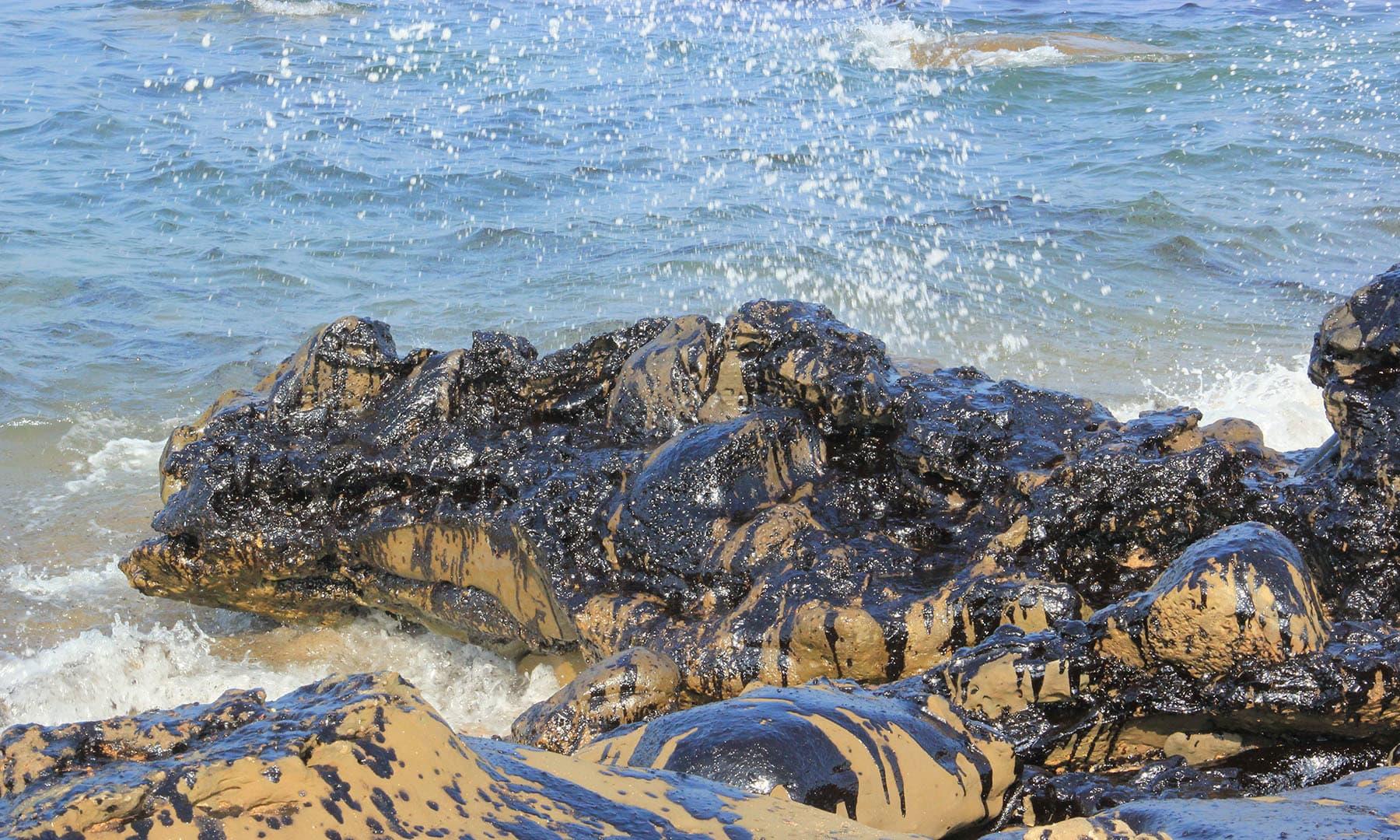 سمندر کے اندر موجود پتھروں پر تیل کی سیاہ تہہ دیکھی جا سکتی ہے۔— فوٹو سعید الاسلام