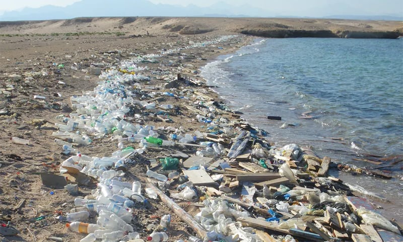 Plastic waste that ends up in the ocean every year could be expected to double by 2025 and there may be more plastic in the ocean than fish by 2050, experts say. ─ Wikimedia Commons