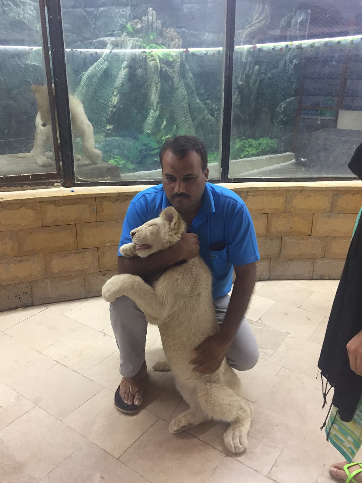 Atif Imtiaz with one of the white lions at the Wildlife Experience Center in Karachi | Haniya Javed