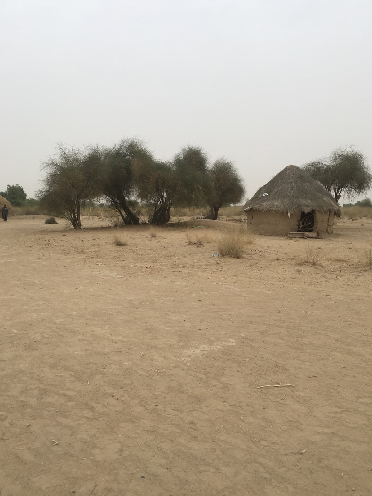 The deserted Rohiraro village in Chachro taluka | Moosa Kaleem