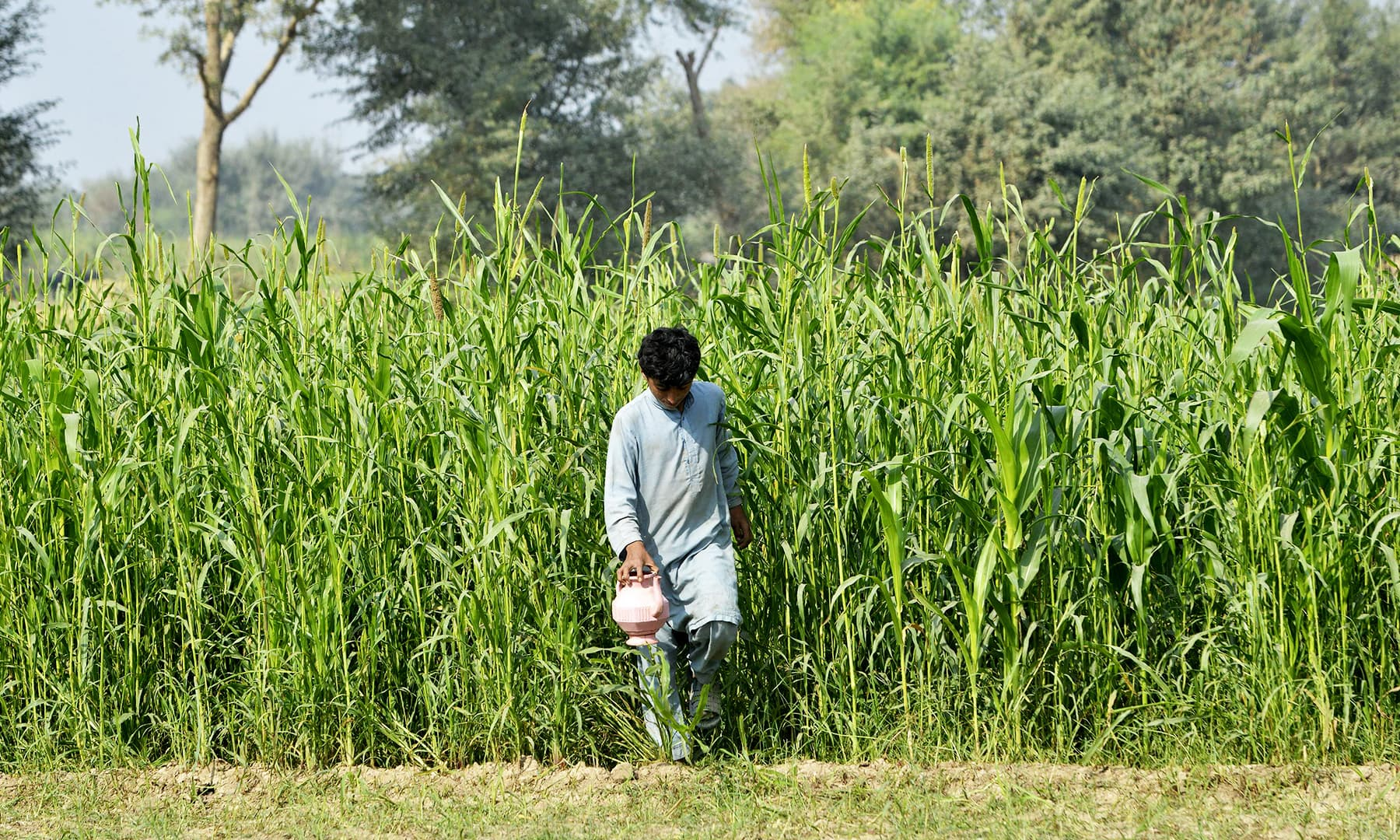 A youngster holds a toilet wash jug as he comes out after 'going' in the fields. —AFP