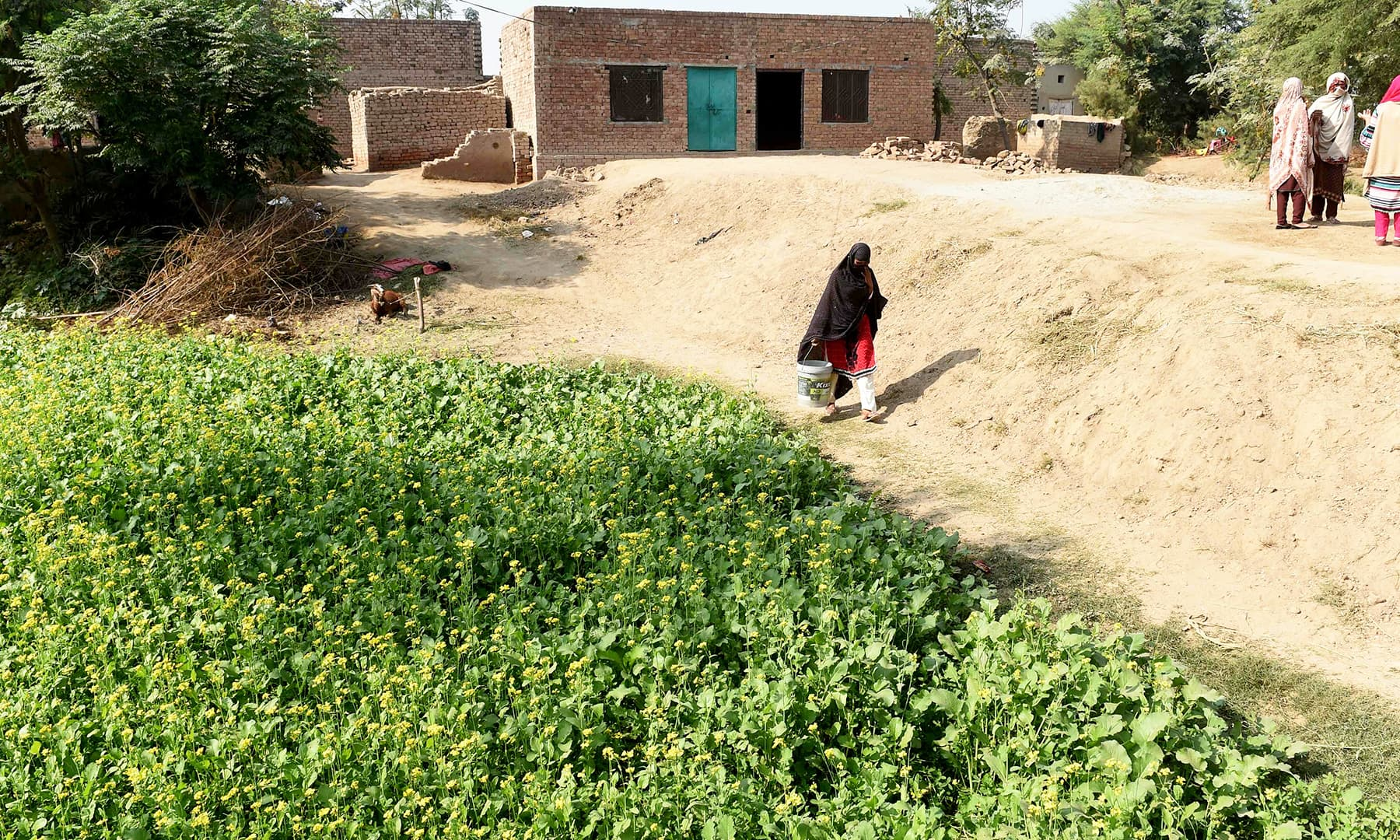 15 out of 60 homes in Basti Ameerwala now have latrines. —AFP